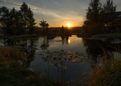 evening-montana